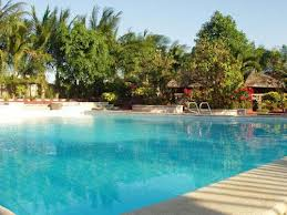 virgoni resort swiming pool